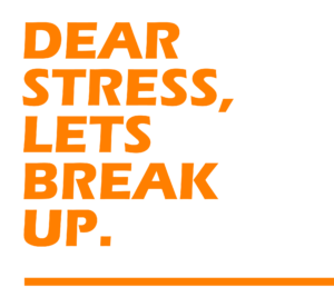 Dear-stress-lets-break-